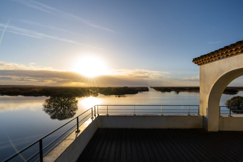Grandlieu's lake. Photo credit: Jérémy Jehanin.
